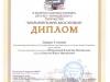 Диплом Павла Кокотова 1-й степени 2013