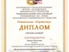 Студенческий Диплом - Диана Волкова - 2011
